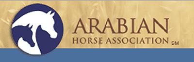 www.arabianhorses.org
